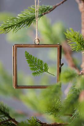Anthropologie Botanical Frame Ornament, Square