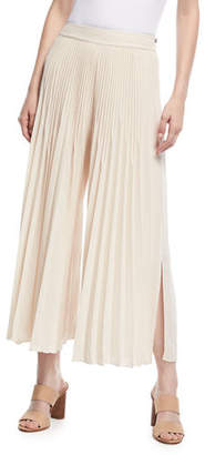Kobi Halperin Eden Pleated Wide-Leg Pants