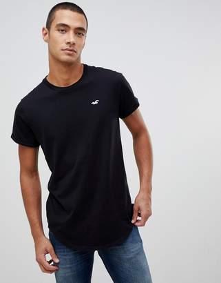 Hollister solid curved hem t-shirt seagull logo slim fit in black