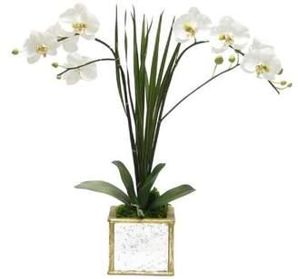 Bougainvillea Artificial 27 Phalaenopsis Orchid Floral Arrangement in Planter