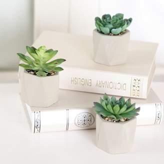 Mainstays Set of 3 Cement Geometric Succulents