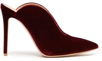 Gianvito Rossi June 105 Velvet Mules - Womens - Burgundy