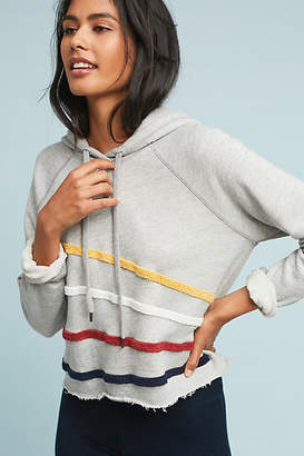 Sundry Chenille Striped Hoodie