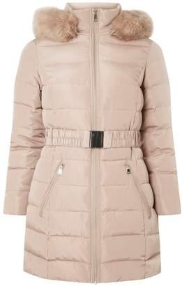 Dorothy Perkins Womens Petite Blush Longline Padded Coat