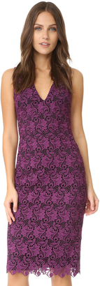 alice + olivia Preslee Fitted Lace Midi Dress $395 thestylecure.com