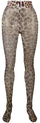 Paco Rabanne leopard print tights