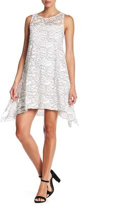 Robbie Bee Lace Trapeze Dress