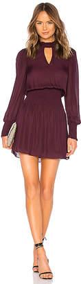 Parker Robyn Dress