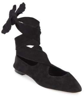 The Row Elodie Ballerina Suede Flats