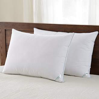 Hotel Collection downluxe Set of 2 Hypoallergenic Down Alternative bed pillows Plush Pillow Firm Density