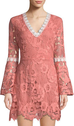 Alexia Admor Lace Bell-Sleeve Fit & Flare Dress