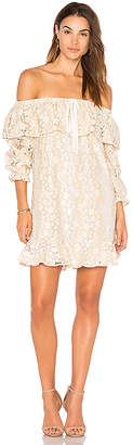 Endless Rose Off Shoulder Lace Dress With Tie in Beige $102 thestylecure.com
