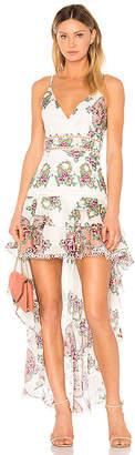 Aijek Naomi Print Dress