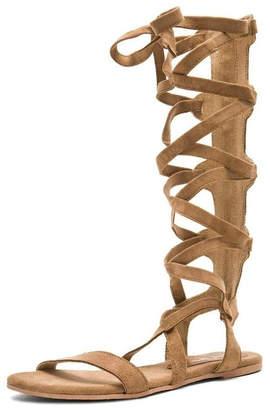 Matisse/Coconuts Zephyr Gladiator Sandal