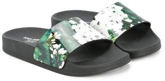 Dolce & Gabbana floral-print slides