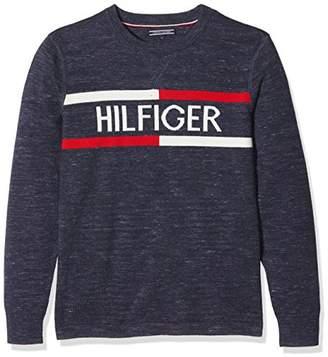 a7e99a8c Tommy Hilfiger Tommy Boy's Ame Cn Sweater L/s Boyfriend Long Sleeve Slim  Jersey,