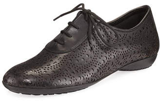 Sesto Meucci Betka Laser-Cut Oxford Sneakers, Black