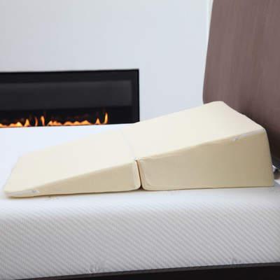 Wayfair Natchez Memory Foam Pillow