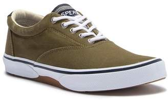 Sperry Halyard Canvas CVO Sw Sneaker