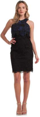 Trina Turk Miranda Dresss