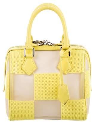 Louis Vuitton Optic Mesh Speedy Cube TPM