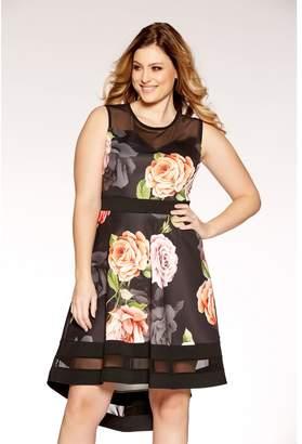 Quiz Curve Black Floral Print Mesh Skater Dress