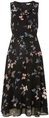 Dorothy Perkins Womens **Billie & Blossom Tall Black Butterfly Print Midi Skater Dress