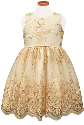 Sorbet Embroidered Tulle Party Dress