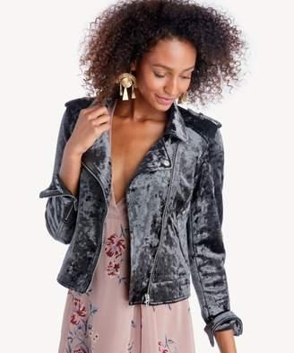 Sole Society Graphite Jacket