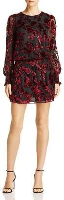 Parker Carmindy Floral Velvet Burnout Dress