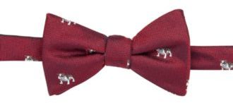 Countess Mara Men's Bulldog Pre-Tied Bow Tie