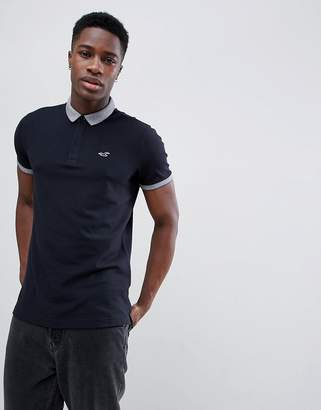 Hollister Contrast Collar Seagull Logo Pique Polo in Black