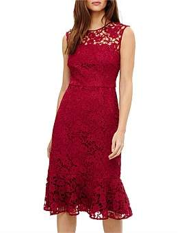 Phase Eight Sabby Lace Dress