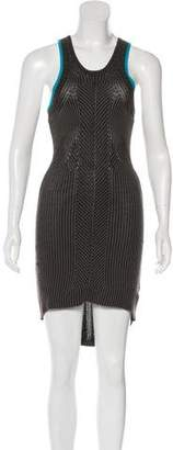 Alexander Wang Rib Knit Dress
