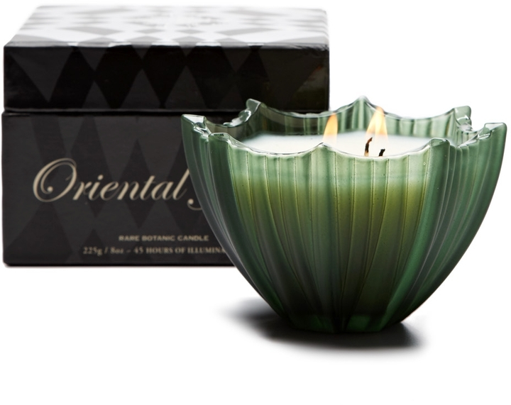 D.L. & Co. Parlour Collection Frosted Scallop Oriental Jade Candle (8 OZ)