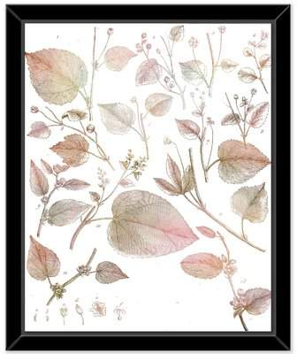Wayfair 'Natural 4' Framed Graphic Art Print on Canvas