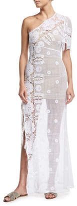 Miguelina Elora Sheer Lace Maxi Dress Coverup