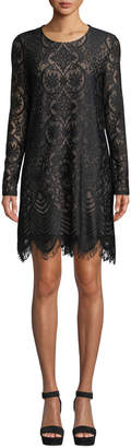 BCBGMAXAZRIA Scalloped-Hem Lace Sheath Dress