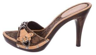 Christian Dior Trotter Leather Clogs