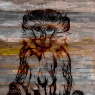Parvez Taj Primate Canvas Wall Art