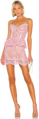V. Chapman Poppy Dress