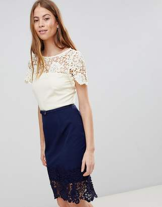 Paper Dolls Cream And Navy Lace Panel Dress