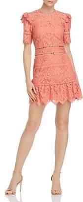 Saylor Bold Floral Lace Mini Dress