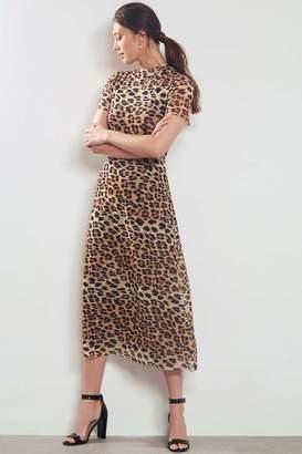 Mint Velvet Womens Leopard Print Mesh Dress - Animal