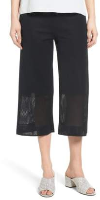 Ming Wang Mesh Inset Crop Pants