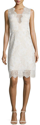 Elie Tahari Anne Sleeveless V-Neck Lace Dress $498 thestylecure.com