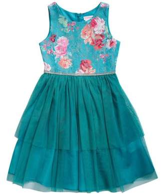 Youngland Little Girls' 4-6X Floral Lace and Tulle Special Occasion Dress