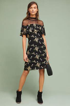 Donna Morgan Illusion Embroidered Lace Shift Dress