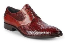 Jo Ghost Python Derby Shoes