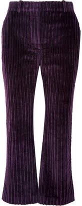 Altuzarra Adler Cropped Cotton-corduroy Flared Pants - Purple
